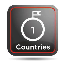 Visit 1 country on your tour